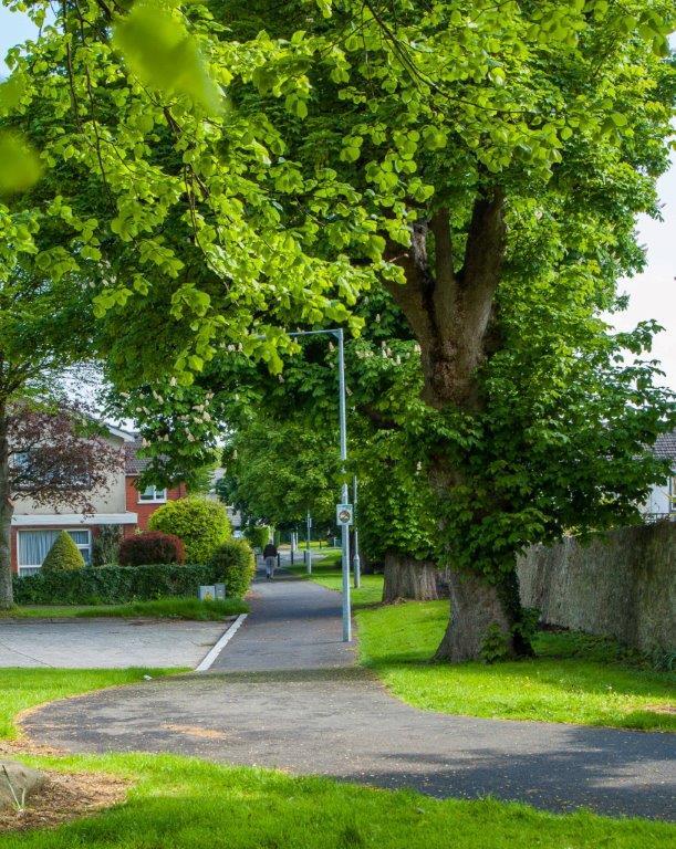 Marley Grange Estate:- Tree Care Programme (TCP) June 2015