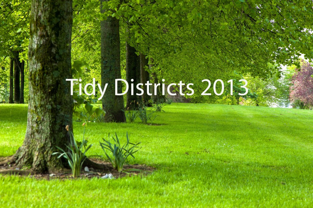 Tidy Districts 2013