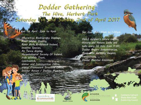 Dodder Gathering 2017